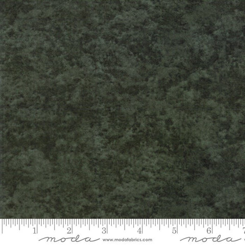Fresh Off The Vine - Holly Taylor - Marble - Zucchini - 6538-173 - Fabric is sold in 1/2 yard increments