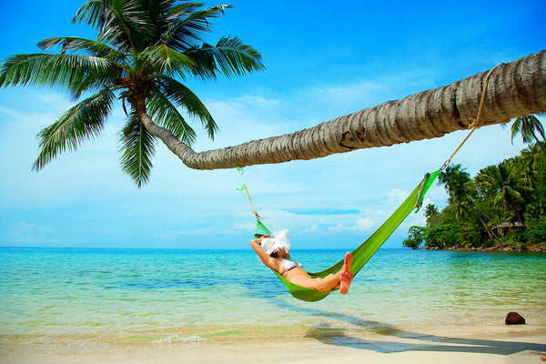 Sea Tropical Beach Hammock Palm Tree Poster