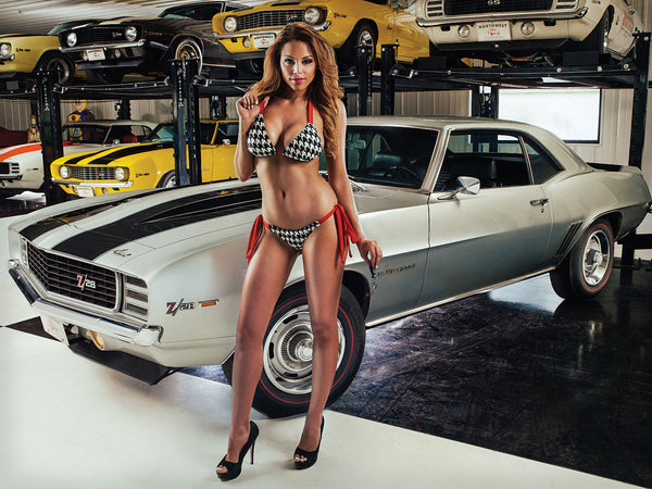 Super Sexy Girl and Cars Hot Model Poster