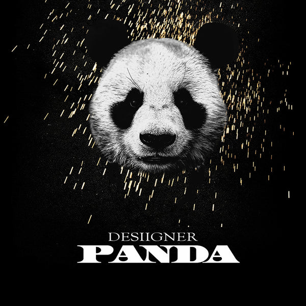Desiigner - Panda HipHop Rapper Super Star Music Poster