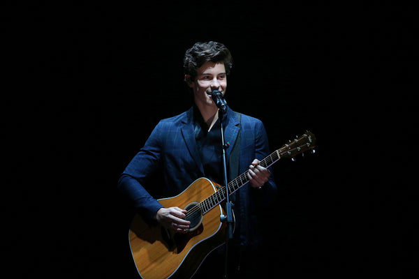 Shawn Mendes Music Poster