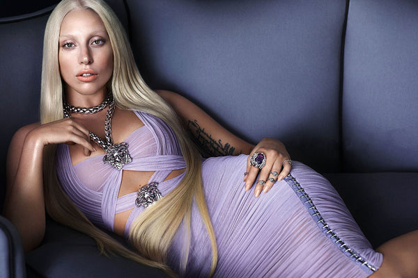 Lady Gaga in Sexy Dress Poster