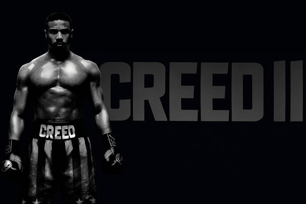 Creed II Michael B Jordan Adonis Johnson Poster