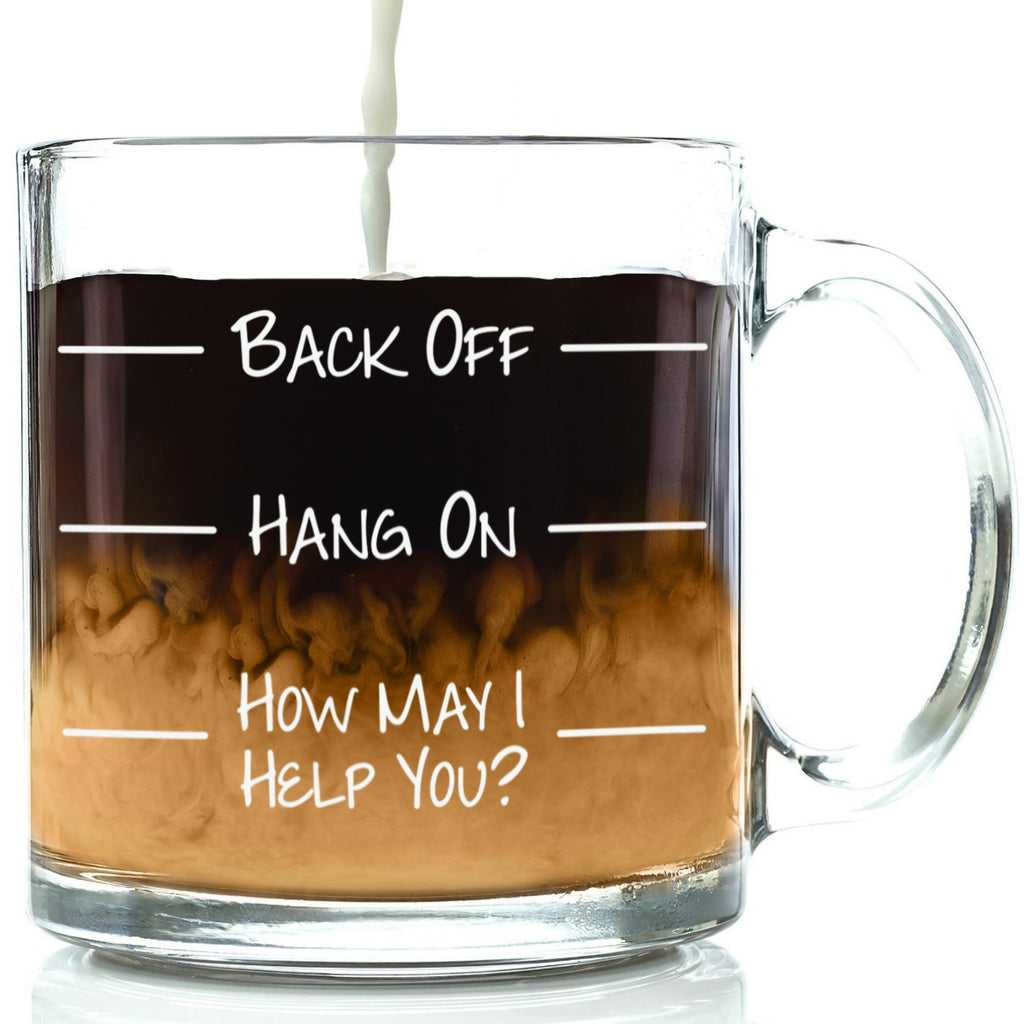 back off hang on how may i help you funny coffee mug go away glass cup best office gift birthday gift idea for men women friend coworker unique christmas present novelty xmas stocking stuffer