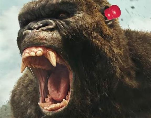 8 Things You Never Knew About The Kong