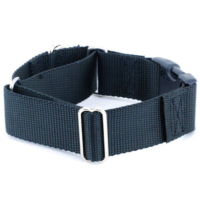 "1.5"" Extra Wide Dog Nylon Collar by 2 Hounds Design-Store For The Dogs"