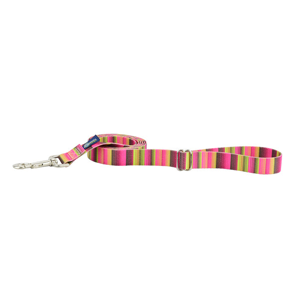 EarthStyle Regular Dog Leash by 2 Hounds Design-Store For The Dogs