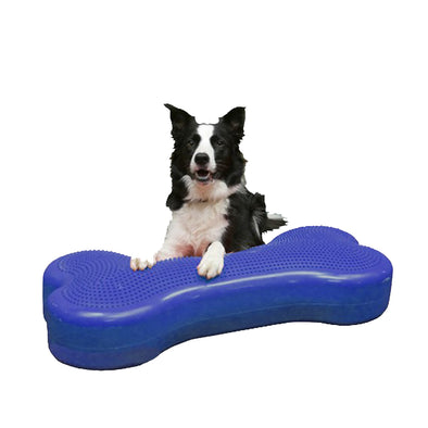 Giant K9FITbone by FitPAWS-Store For The Dogs