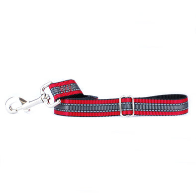 Reflective Nylon Dog Leash by 2 Hounds Design-Store For The Dogs