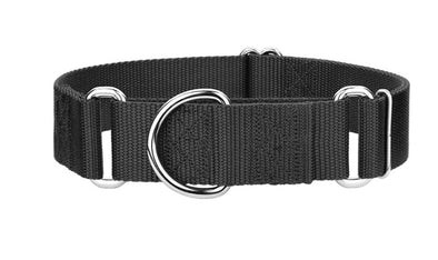 "2"" Extra Wide Nylon Martingale Collar by 2 Hounds Design-Store For The Dogs"