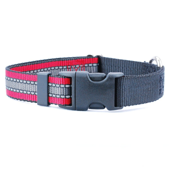 Reflective Dog Collar by 2 Hounds Design-Store For The Dogs