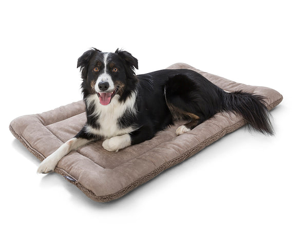 Big Sky Nap Bed by West Paw-Store For The Dogs