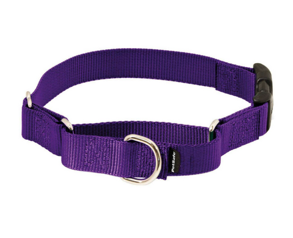 Buckle Martingale Collar-Store For The Dogs