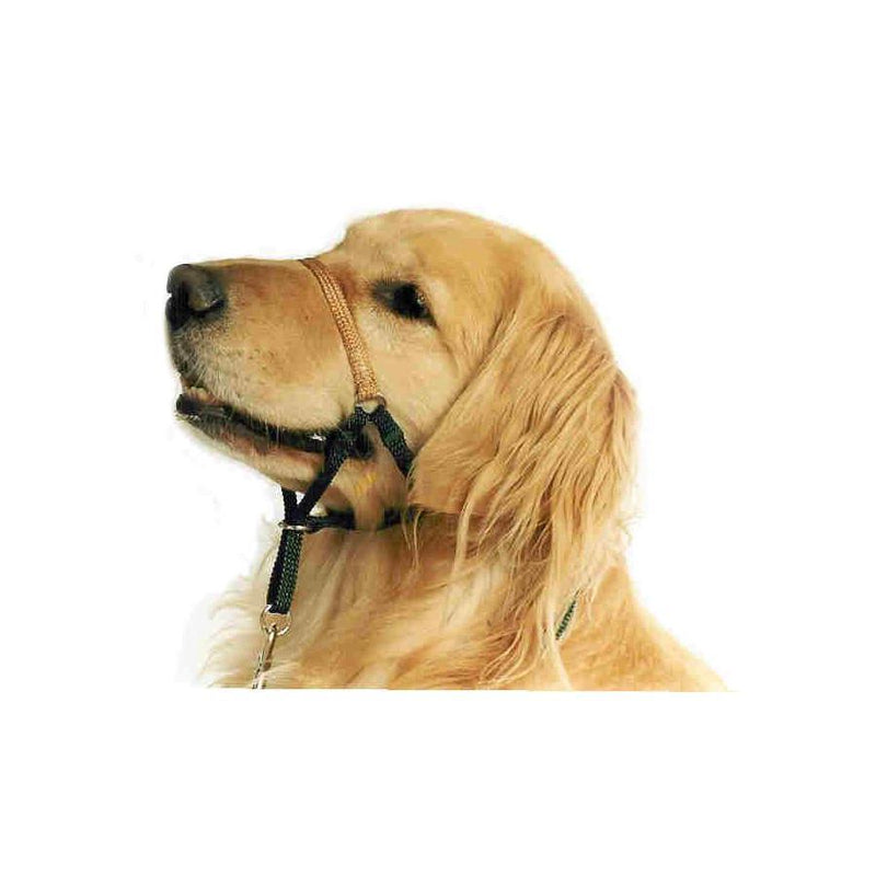 Comfort Trainer Head Halter-Store For The Dogs