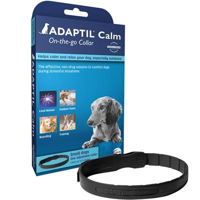 DAP Collar-Store For The Dogs