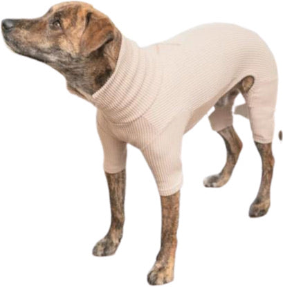 High V-Neck Jumpsuit by The Furry Folks-Store For The Dogs