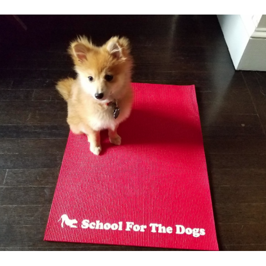 School For The Dogs Training Mat-Store For The Dogs