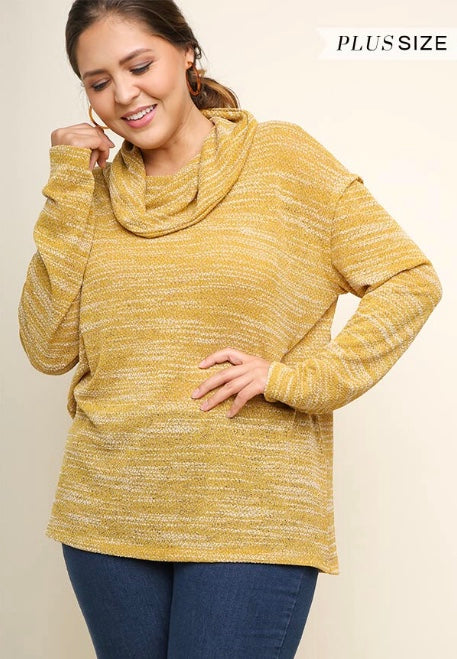 Knit Long Sleeve Turtleneck Top