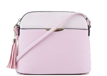 Two Toned Crossbody Purse