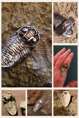 My Trilobite Ring