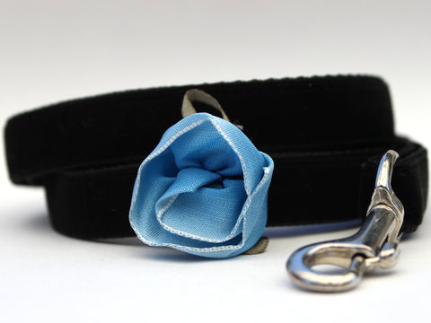 CARNATION BLUE DOG LEASH