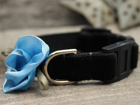 CARNATION BLUE CAT COLLAR