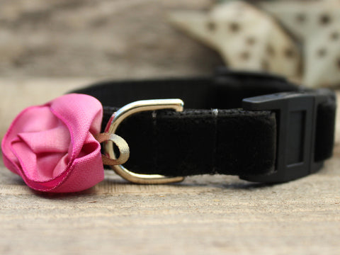 CARNATION ORCHID CAT COLLAR