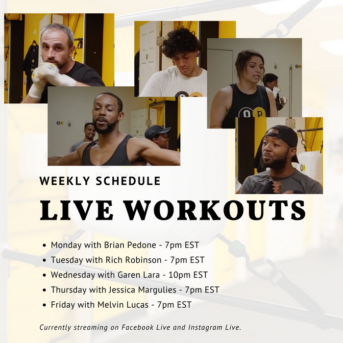 Live Workout Schedule