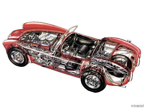 Ac Cobra Cutaway poster tin sign Wall Art