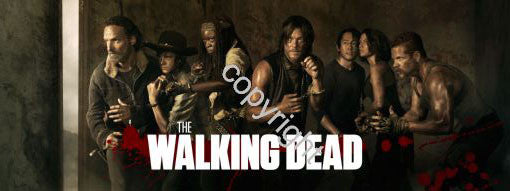 The Walking Dead Poster Scroll Banner 36x14