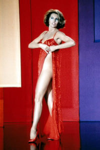 Cyd Charisse Poster 24inx36in Poster