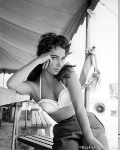 Elizabeth Taylor Poster 24x36 bw photo