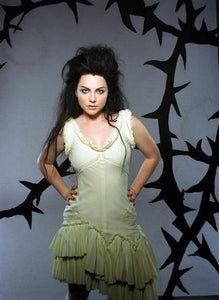 Amy Lee Photo Sign 8in x 12in