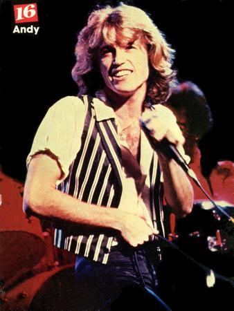 Andy Gibb Vintage 80'S Image poster tin sign Wall Art