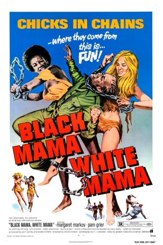 (24inx36in ) Black Mama White Mama poster