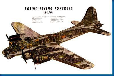 B17G Cutaway Military Aircraft poster tin sign Wall Art
