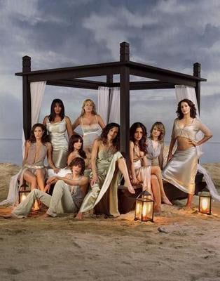L Word Beach 11x17 Mini Poster