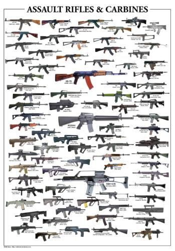 (24inx36in ) Assault Rifles Poster Print