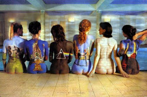 Pink Floyd Backs Poster 24inx36in