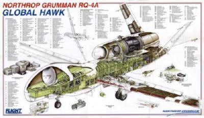Global Hawk Cutaway poster tin sign Wall Art