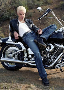 James Marsters poster| theposterdepot.com