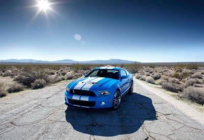 Shelby GT500 poster tin sign Wall Art