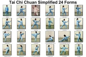 "Tai Chi Chuan 24 Forms Poster 16""x24"" On Sale The Poster Depot"
