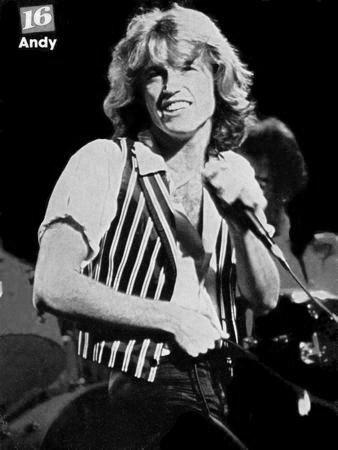 Andy Gibb black and white poster