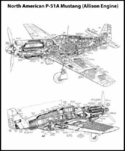 Mustang P51 Cutaway black and white poster