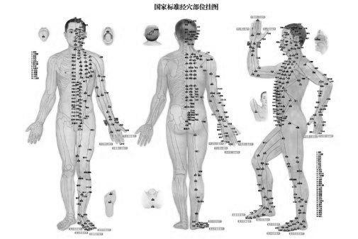 Acupuncture Poster Black and White Poster 27