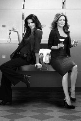 Rizzoli Isles poster tin sign Wall Art