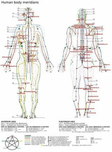 Acupuncture Human Body Meridians poster 27x40| theposterdepot.com