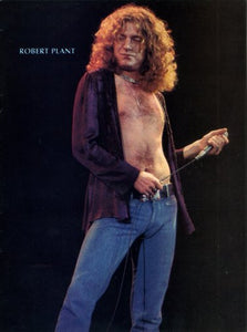 "Music Robert Plant Poster 16""x24"" On Sale The Poster Depot"