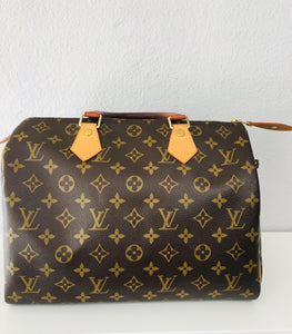 Louis Vuitton Speedy Bag - Vanity's Vault